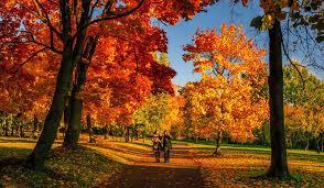 Выходные и праздничные дни осенью 2019 года