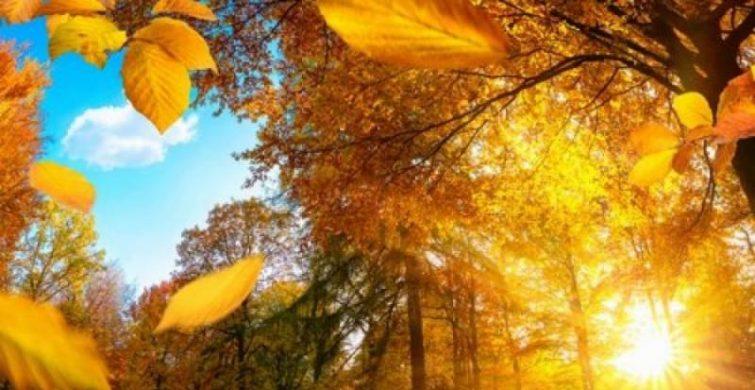 День равноденствия осенью наступит 23 сентября