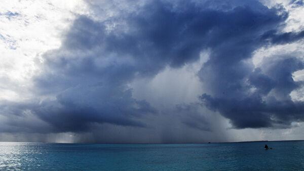Ученые нашли в атмосфере Земли опасные для здоровья споры грибов