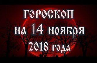 Ежедневный гороскоп на 14 ноября 2018 года для всех знаков