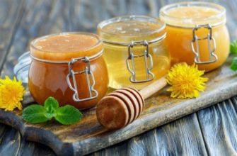 Популярные сорта меда