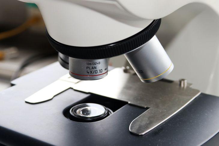 Выяснено, как долго антитела защищают от инфицирования коронавирусом