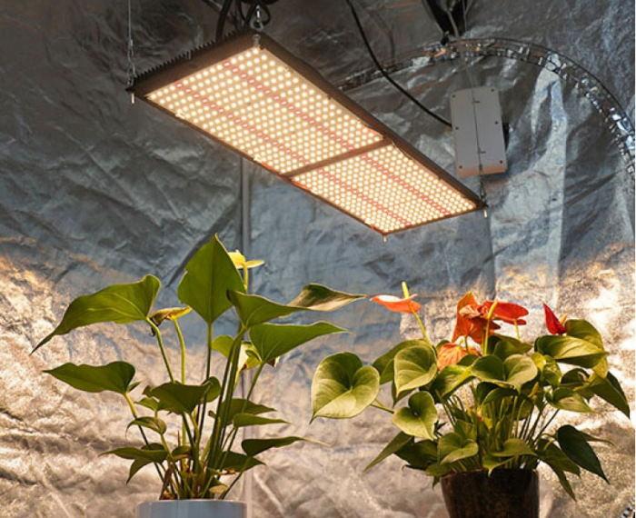 Светодиодная лампа Quantum Board: основные преимущества