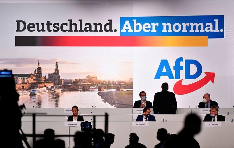 В Германии «правые» за выход страны из Европейского союза