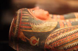 В польском музее обнаружили мумию беременной женщины