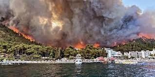 Два дня в Турции полыхают лесные пожары, есть жертвы
