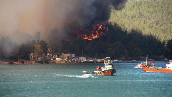 В Турции пожар добрался до Миласской теплоэлектростанции