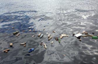 В Чехии разработали микророботов для очистки мирового океана от пластика
