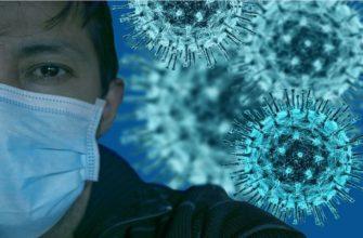 Японские учёные обнаружили неизвестный опасный вирус